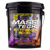 Muscletech Mass Tech Extreme 2000 22 Lbs in Pakistan, Karachi, Lahore, Islamabad at Bravo Nutrition
